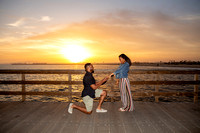 Engagement Proposal Seal Beach