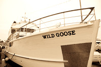 Wild Goose Wedding-4
