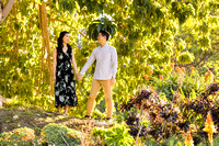 Engagement Photos South Coast Botanical Gardens-008