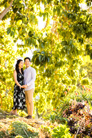 Engagement Photos South Coast Botanical Gardens-012