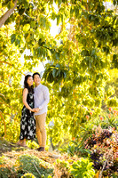 Engagement Photos South Coast Botanical Gardens-013